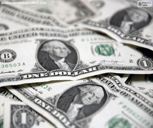 Rompicapo di Dollaro USA