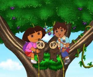 Rompicapo di Dora e il cugino Diego in un albero due orsetti aiutare