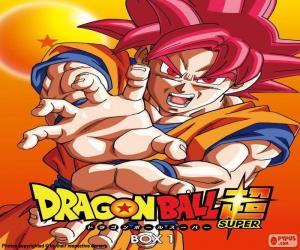 Rompicapo di Dragon Ball Super