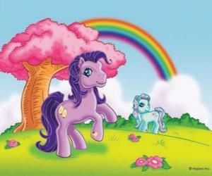 Rompicapo di Due pony nel campo