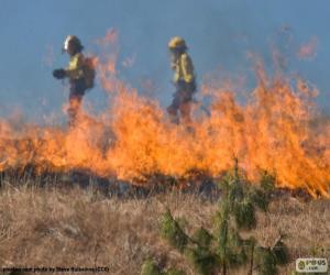 Rompicapo di Due vigili del fuoco, fuoco