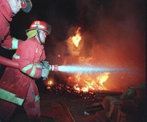 Rompicapo di Due vigili del fuoco in azione