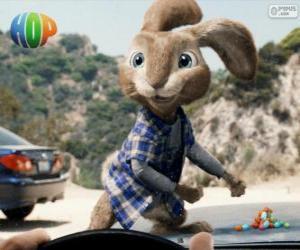Rompicapo di EB, il ribelle coniglio Pasquale