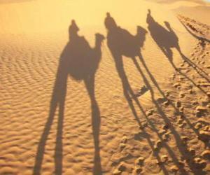 Rompicapo di Els tres Reis Mags a lloms dels camells en el seu camí cap a Betlem