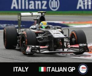 Rompicapo di Esteban Gutiérrez - Sauber - Monza, 2013