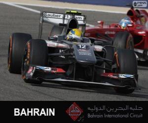 Rompicapo di Esteban Gutierrez - Sauber - 2013 Bahrain International Circuit