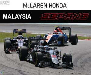 Rompicapo di F. Alonso, GP di Malesia 2016