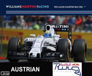 Rompicapo di F. Massa, G.P Austria 2015