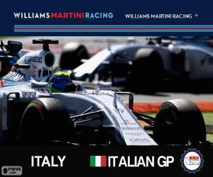 Rompicapo di F. Massa, GP d'Italia 2015