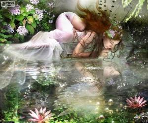 Rompicapo di Fata Ondina, sono ninfe acquatiche di spettacolare bellezza