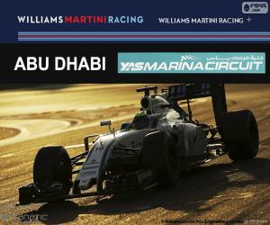 Rompicapo di Felipe Massa, GP Abu Dhabi 2016