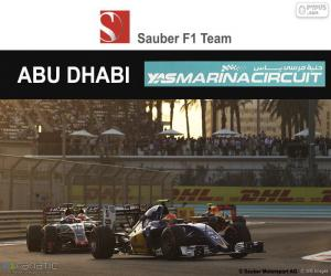 Rompicapo di Felipe Nasr, GP Abu Dhabi 2016