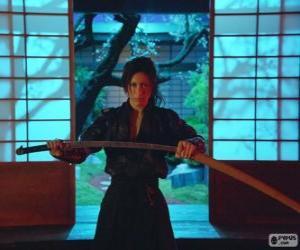 Rompicapo di Femmina samurai