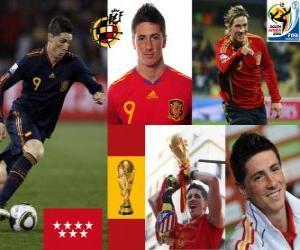 Rompicapo di Fernando Torres (ci ha fatto sognare), attaccante Squadra Nazionale Spagnola