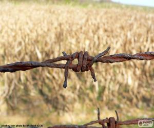 Rompicapo di filo ferro arrugginito