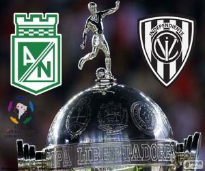Rompicapo di Finale Coppa Libertadores 2016