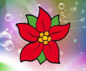 Rompicapo di Fiore di Natale