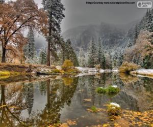 Rompicapo di Fiume Merced, California