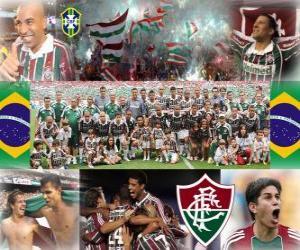 Rompicapo di Fluminense Football Club Campione del Campionato brasiliano 2010
