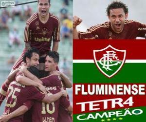 Rompicapo di Fluminense Football Club Campione del Campionato brasiliano 2012