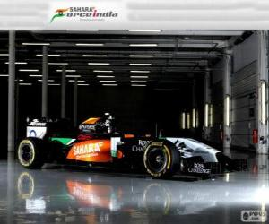 Rompicapo di Force India VJM 07 - 2014 -