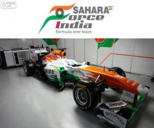 Rompicapo di Force India VJM06 - 2013 -