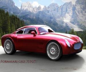 Rompicapo di Fornasari 311 GT