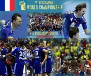Rompicapo di Francia 2011 Medaglia d'oro mondiale di pallamano