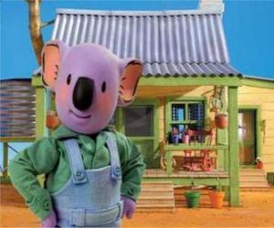 Rompicapo di Frank è uno dei fratelli koala australiano