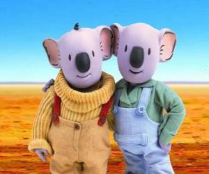 Rompicapo di Frank e Buster, i fratelli koala