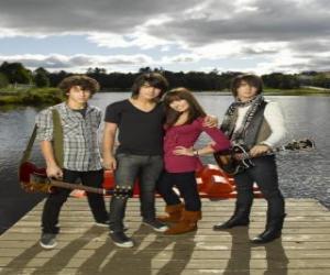Rompicapo di Fratelli Grey (Jonas Brothers) e Mitchie Torres (Demi Lovato)