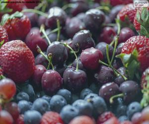 Rompicapo di Frutti di bosco