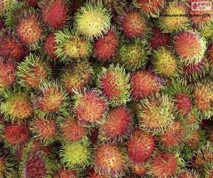 Rompicapo di Frutti di rambutan