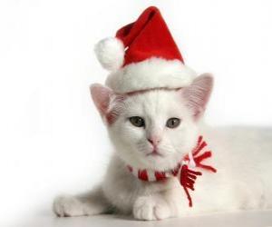 Rompicapo di gatto bianco con cappelli di Babbo Natale