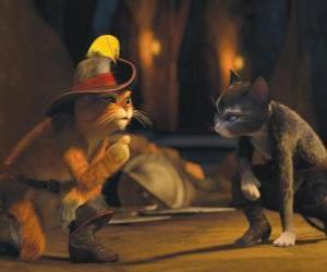 Rompicapo di Gatto con gli Stivali parlare con Kitty