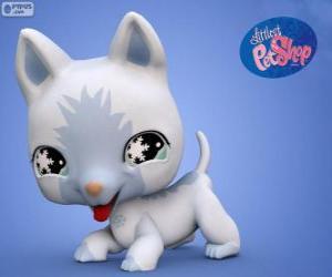 Rompicapo di Gatto da PetShop Littlest