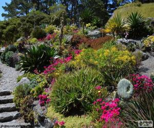 Rompicapo di Giardino botanico