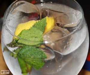 Rompicapo di Gin tonic