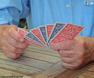 Rompicapo di Gioco da carte