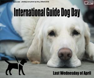 Rompicapo di Giornata internazionale del cane guida