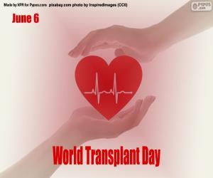 Rompicapo di Giornata mondiale dei pazienti trapiantati