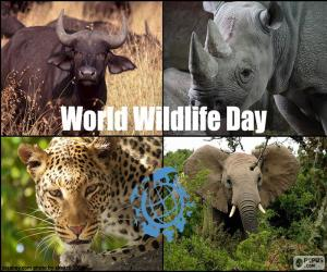 Rompicapo di Giornata mondiale della fauna selvatica