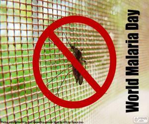 Rompicapo di Giornata mondiale della Malaria