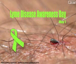 Rompicapo di Giornata mondiale della malattia di Lyme