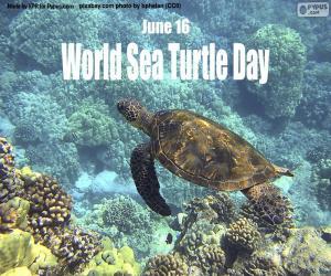 Rompicapo di Giornata mondiale delle tartarughe marine