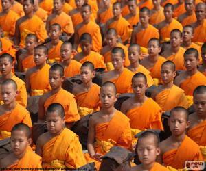 Rompicapo di Giovani monaci buddisti