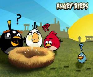 Rompicapo di Gli uccelli scoprono che qualcuno ha rubato le uova dal nido