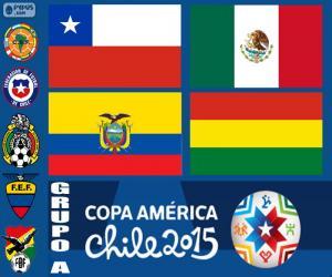 Rompicapo di Gruppo A, Copa America 2015