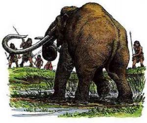 Rompicapo di Gruppo di uomini preistorici armati di lance a caccia uno mammut