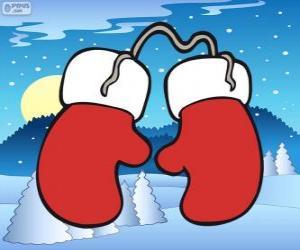 Rompicapo di Guanti di Babbo Natale. Guanti bianchi e rossi